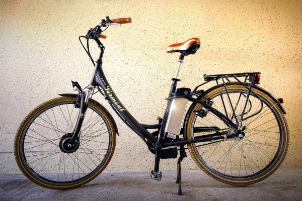 bicicletta elettrica o e-bike